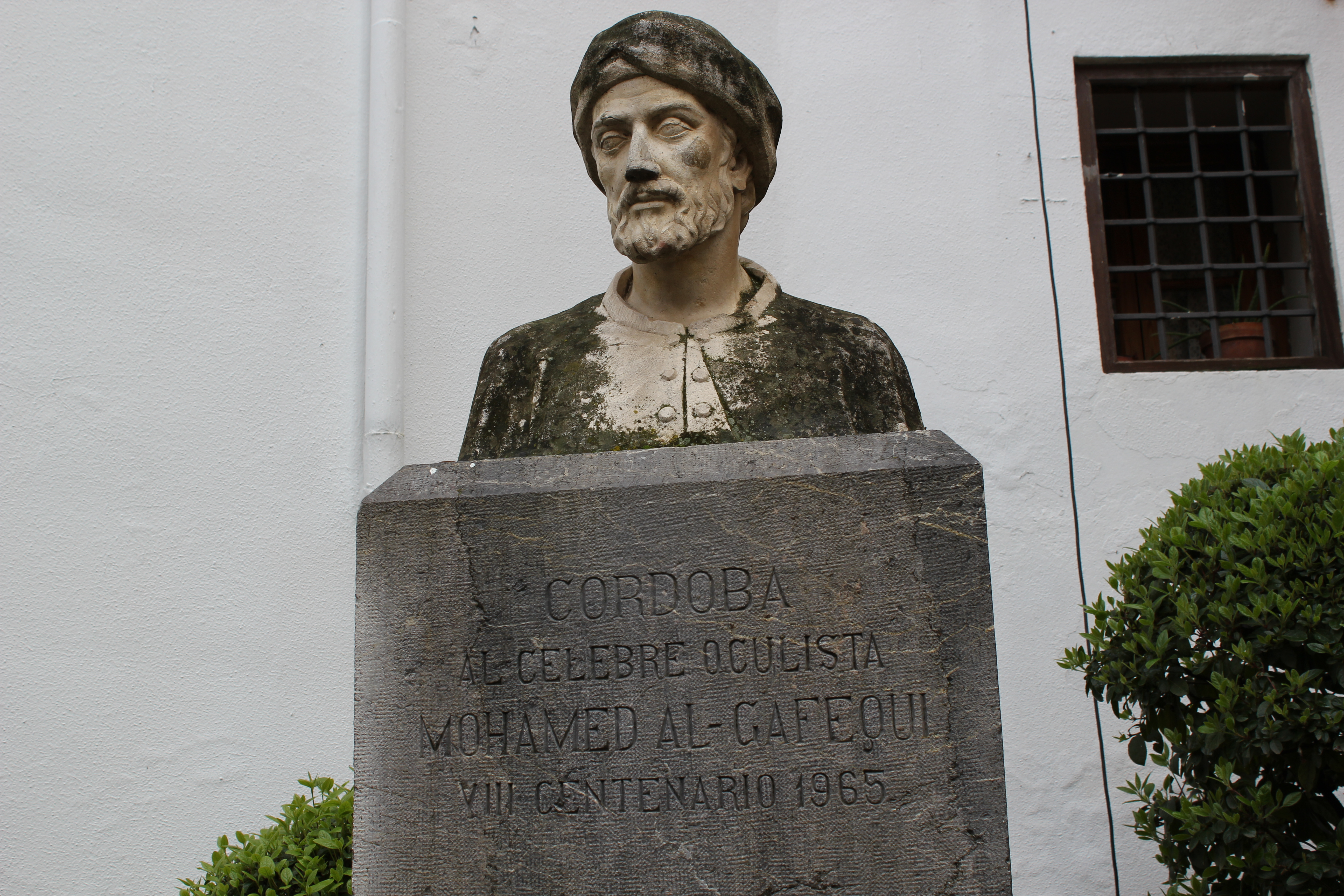 Algafequi: un cirujano de cataratas cordobés en el siglo XII