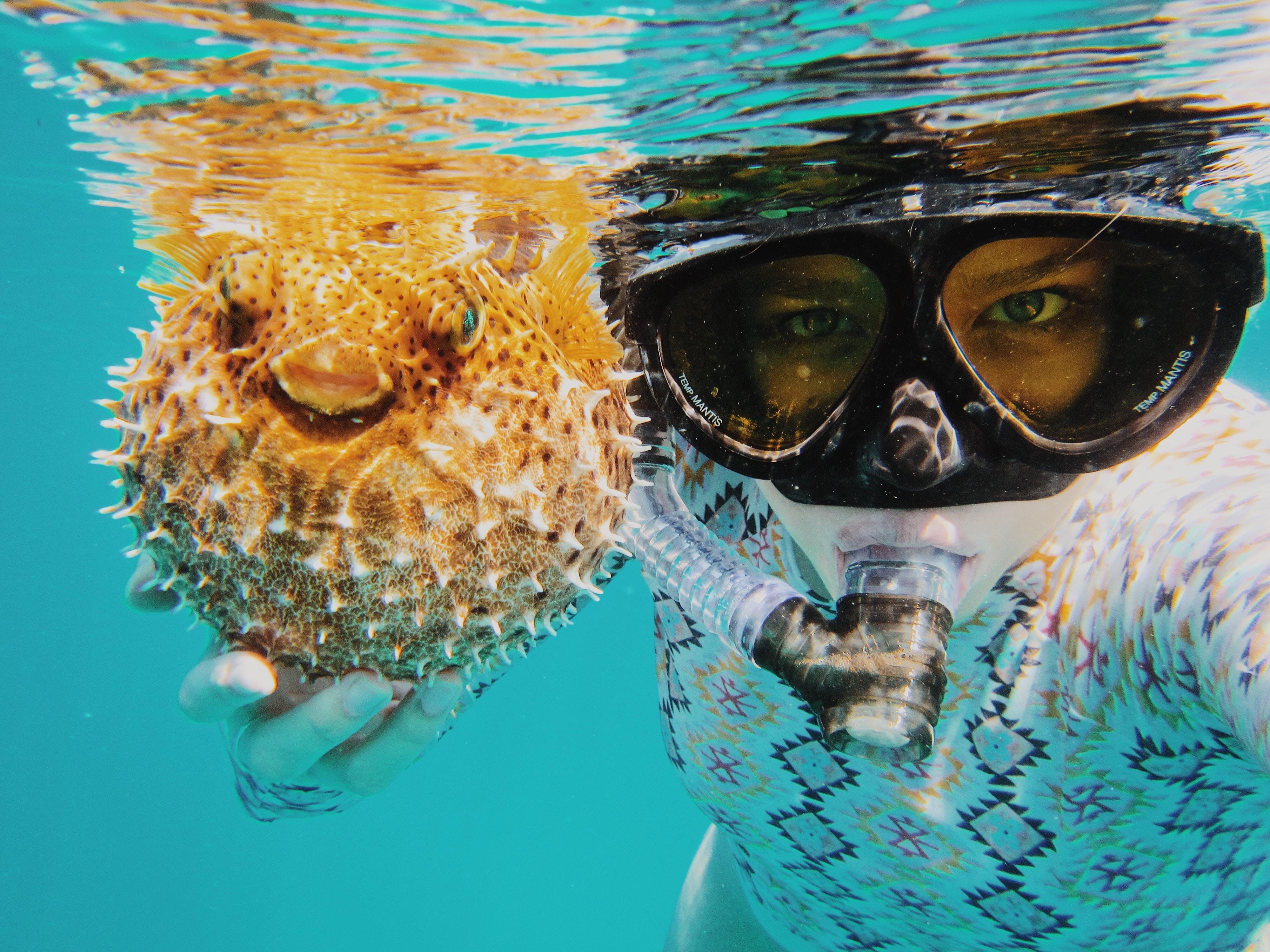 Los ojos y las actividades acuáticas