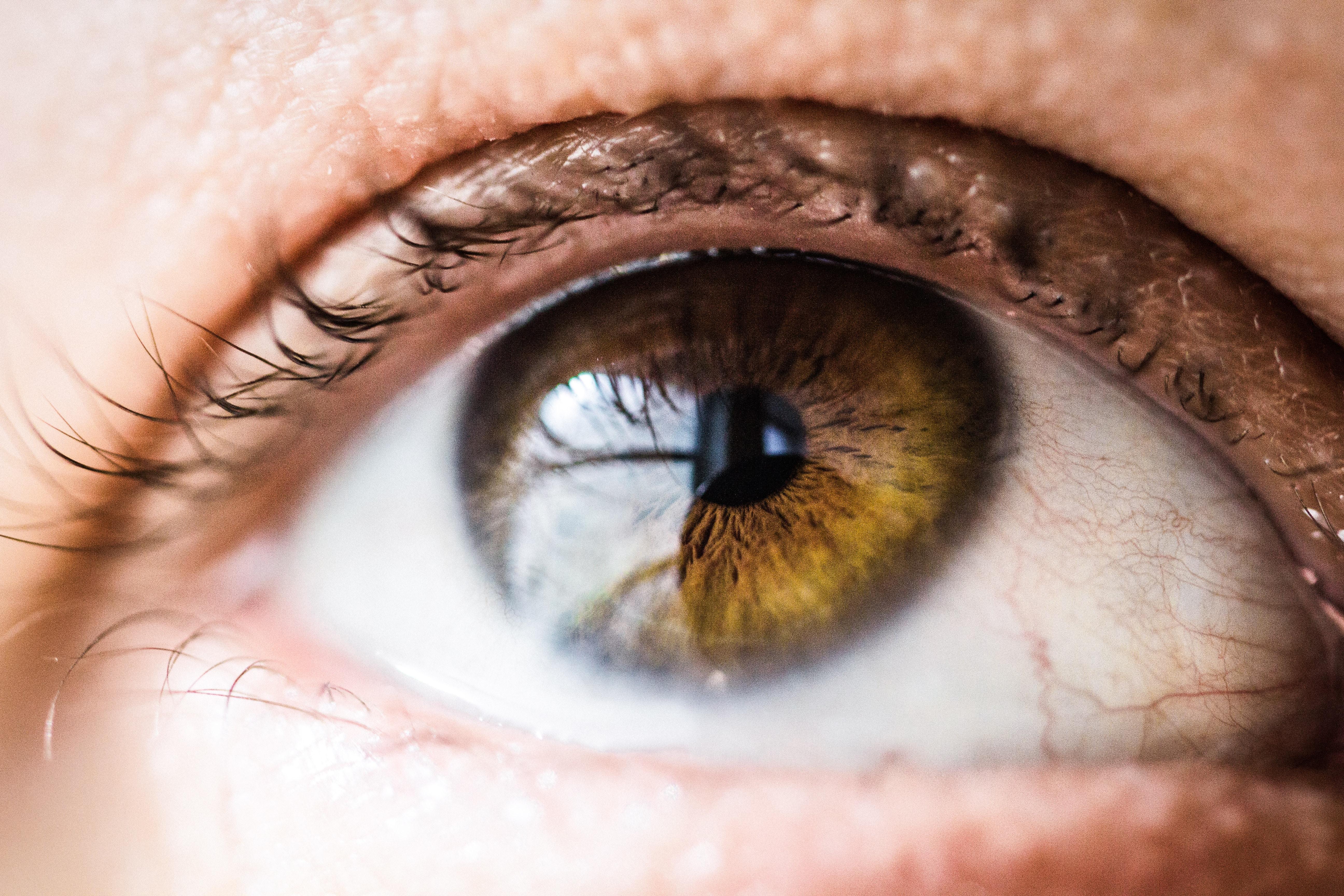 Movimientos involuntarios de los ojos